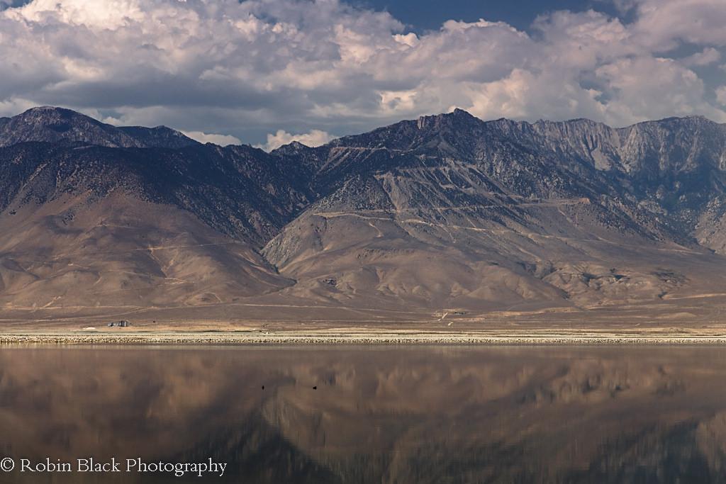 Eastern Sierra Crest Reflected in Owens Lake